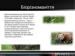 Біорізноманіття Дніпропетровщина має багату флору і фауну: рослинний світ налічу