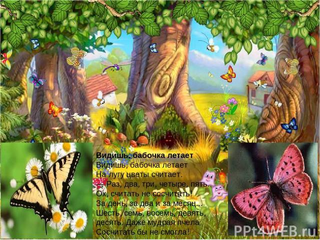 Видишь, бабочка летает Видишь, бабочка летает На лугу цветы считает. — Раз, два, три, четыре, пять. Ох, считать не сосчитать! За день, за два и за месяц... Шесть, семь, восемь, девять, десять. Даже мудрая пчела Сосчитать бы не смогла!