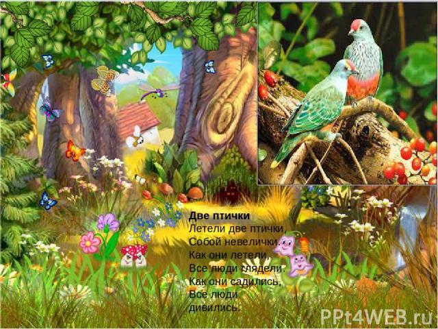 Две птички Летели две птички, Собой невелички. Как они летели, Все люди глядели. Как они садились, Все люди дивились.