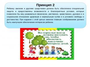 Принцип 2 Ребенку законом и другими средствами должна быть обеспечена специальна