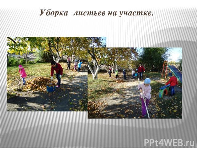 Уборка листьев на участке.