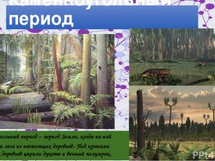 Леса Каменноугольный период Каменноугольный период – период Земли, когда на ней