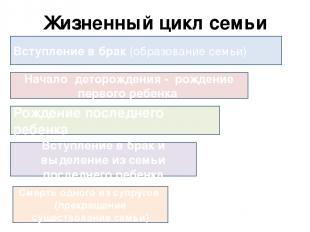 Жизненный цикл семьи Вступление в брак (образование семьи) Начало деторождения -