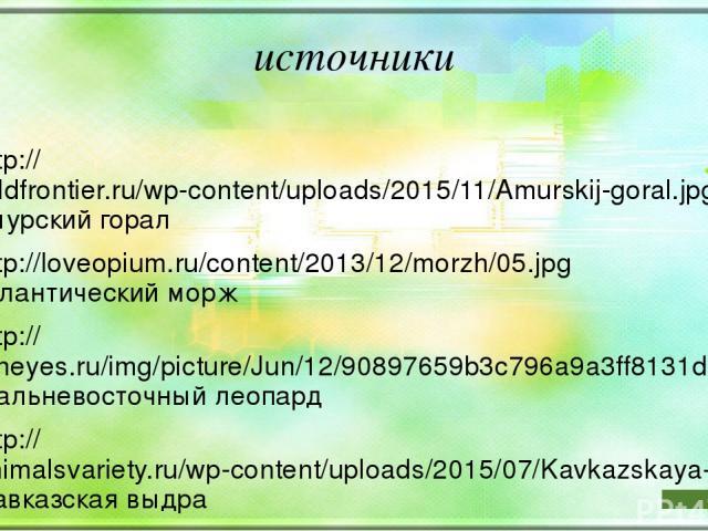 источники http://wildfrontier.ru/wp-content/uploads/2015/11/Amurskij-goral.jpg амурский горал http://loveopium.ru/content/2013/12/morzh/05.jpg атлантический морж http://foneyes.ru/img/picture/Jun/12/90897659b3c796a9a3ff8131dda6d3a9/3.jpg дальневосто…