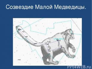 Созвездие Малой Медведицы.