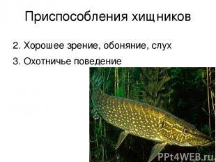 Приспособления хищников 2. Хорошее зрение, обоняние, слух 3. Охотничье поведение