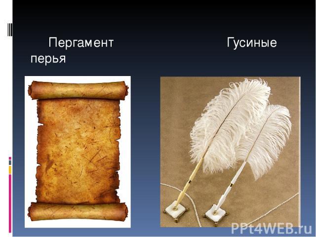 Пергамент Гусиные перья
