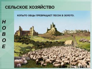 СЕЛЬСКОЕ ХОЗЯЙСТВО НОВОЕ ОГОРАЖИВАНИЯ – сгон английских крестьян с земли для раз