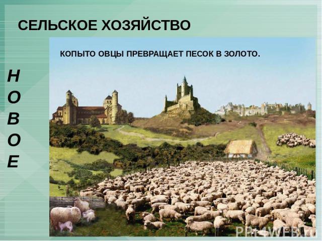 СЕЛЬСКОЕ ХОЗЯЙСТВО НОВОЕ ОГОРАЖИВАНИЯ – сгон английских крестьян с земли для развития овцеводства. КОПЫТО ОВЦЫ ПРЕВРАЩАЕТ ПЕСОК В ЗОЛОТО.