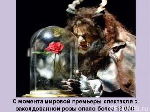 С момента мировой премьеры спектакля с заколдованной розы опало более 13 000 леп
