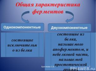 Общая характеристика ферментов Однокомпонентные Двухкомпонентные состоящие исклю