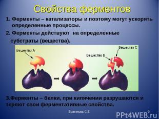 3.Ферменты – белки, при кипячении разрушаются и теряют свои ферментативные свойс