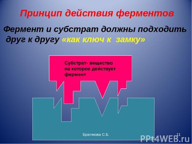 Принцип действия ферментов Фермент и субстрат должны подходить друг к другу «как ключ к замку» Братякова С.Б. * Братякова С.Б.