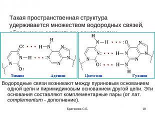Такая пространственная структура удерживается множеством водородных связей, обра