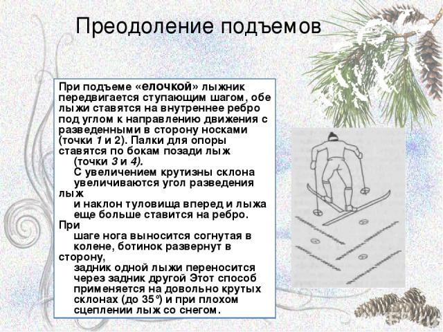 Преодоление подъемов При подъеме «елочкой» лыжник передвигается ступающим шагом, обе лыжи ставятся на внутреннее ребро под углом к направлению движения с разведенными в сторону носками (точки 1 и 2). Палки для опоры ставятся по бокам позади лыж (точ…