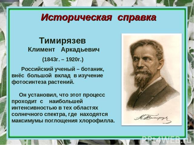 Историческая справка Российский ученый – ботаник, внёс большой вклад в изучение фотосинтеза растений. Он установил, что этот процесс проходит с наибольшей интенсивностью в тех областях солнечного спектра, где находятся максимумы поглощения хлорофилл…