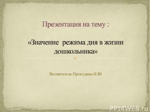 Воспитатель:Прокудина Н.Ю