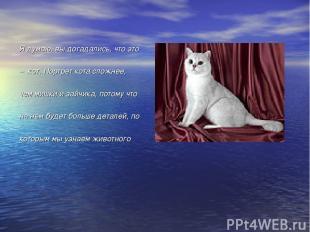 Я думаю, вы догадались, что это – кот. Портрет кота сложнее, чем мишки и зайчика