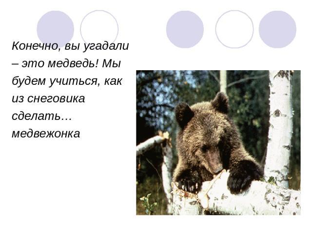 Конечно, вы угадали – это медведь! Мы будем учиться, как из снеговика сделать… медвежонка