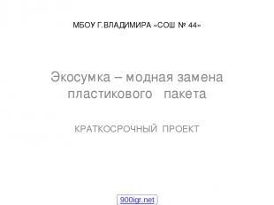 МБОУ Г.ВЛАДИМИРА «СОШ № 44» Экосумка – модная замена пластикового пакета КРАТКОС