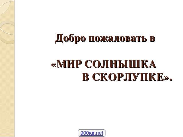 Добро пожаловать в «МИР СОЛНЫШКА В СКОРЛУПКЕ». 900igr.net