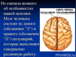 Реферат психика природа механизмы свойства сознание