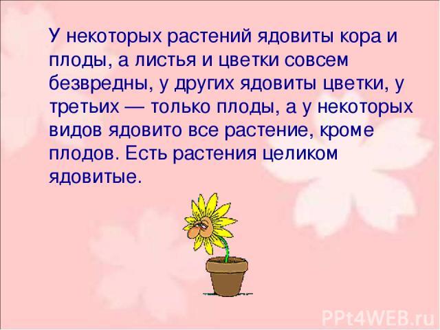 У некоторых растений ядовиты кора и плоды, а листья и цветки совсем безвредны, у других ядовиты цветки, у третьих — только плоды, а у некоторых видов ядовито все растение, кроме плодов. Есть растения целиком ядовитые.