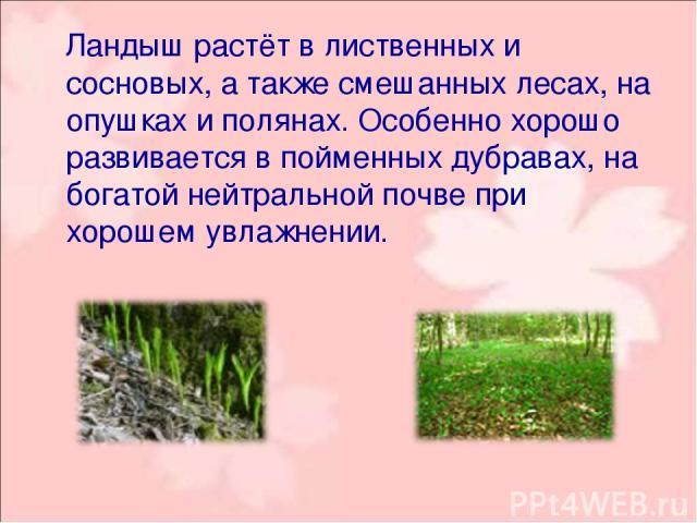 Ландыш растёт в лиственных и сосновых, а также смешанных лесах, на опушках и полянах. Особенно хорошо развивается в пойменных дубравах, на богатой нейтральной почве при хорошем увлажнении.