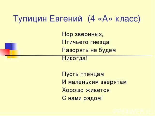 Тупицин Евгений (4 «А» класс) Нор звериных, Птичьего гнезда Разорять не будем Никогда! Пусть птенцам И маленьким зверятам Хорошо живется С нами рядом!