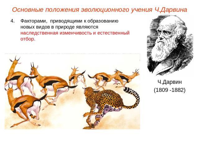 Просмотр содержимого документа естественный отбор - главная движущая сила эволюции
