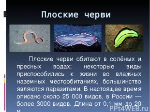 Плоские черви обитают в солёных и пресных водах; некоторые виды приспособились к