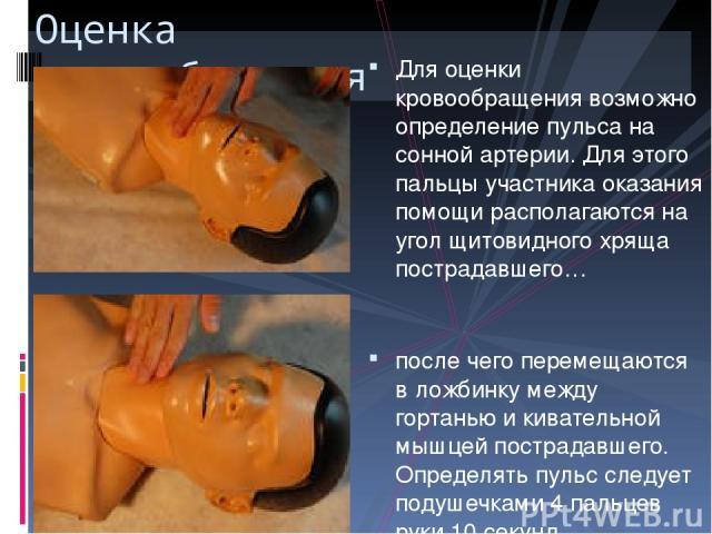 Для оценки кровообращения возможно определение пульса на сонной артерии. Для этого пальцы участника оказания помощи располагаются на угол щитовидного хряща пострадавшего… после чего перемещаются в ложбинку между гортанью и кивательной мышцей пострад…