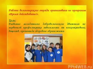 Образец заголовка Образец подзаголовка * * Цель: Развитие молодежного добровольч