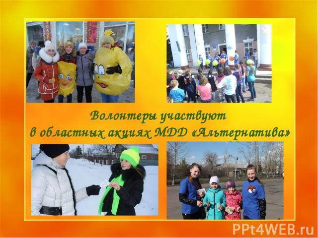 Образец заголовка Образец подзаголовка * * Волонтеры участвуют в областных акциях МДД «Альтернатива»