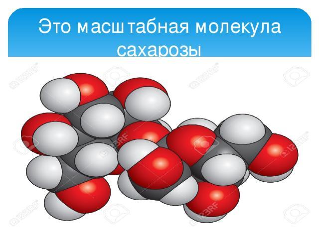 Это масштабная молекула сахарозы