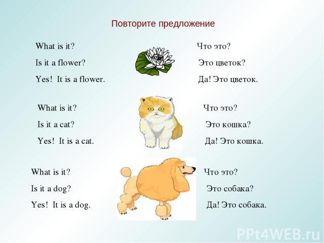 Повторите предложение What is it? Что это? Is it a flower? Это цветок? Yes! It is a flower. Да! Это цветок. What is it? Что это? Is it a cat? Это кошка? Yes! It is a cat. Да! Это кошка. What is it? Что это? Is it a dog? Это собака? Yes! It is a dog.…