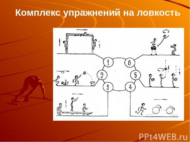 Комплекс упражнений на ловкость