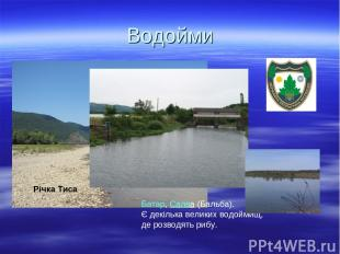 Водойми Річка Тиса  Батар,Салва(Бальба). Є декілька великих водоймищ, де роз