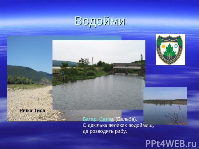 Водойми Річка Тиса  Батар,Салва(Бальба). Є декілька великих водоймищ, де розводять рибу.