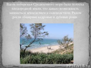 Вдоль побережья Средиземного моря была полоска плодородной земли, это давало воз