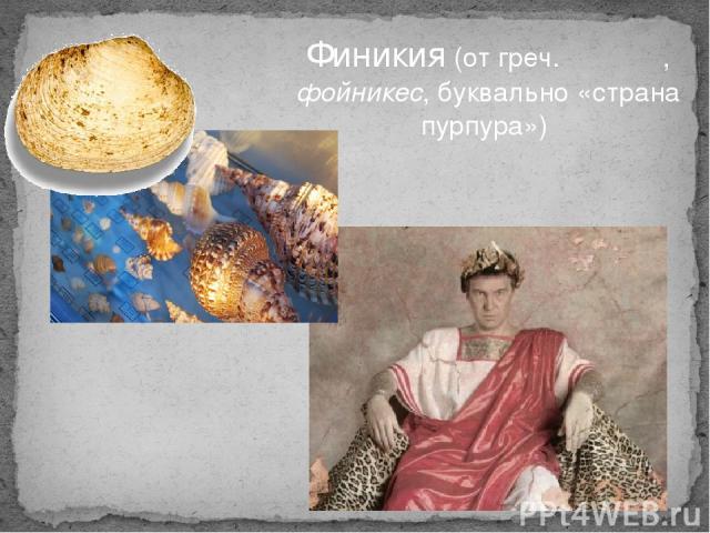 Финики я(от греч.Φοίνικες, фойникес, буквально «страна пурпура»)
