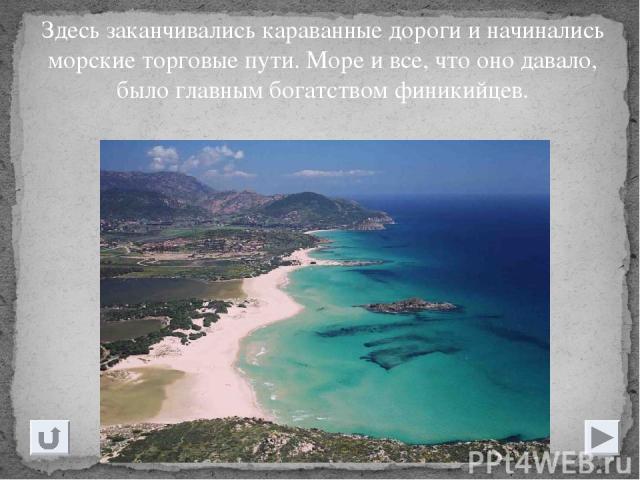 Здесь заканчивались караванные дороги и начинались морские торговые пути. Море и все, что оно давало, было главным богатством финикийцев.