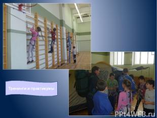 Тренинги и практикумы