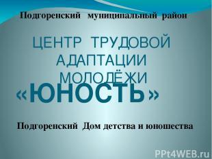 ЦЕНТР ТРУДОВОЙ АДАПТАЦИИ МОЛОДЁЖИ «ЮНОСТЬ» Подгоренский муниципальный район Подг