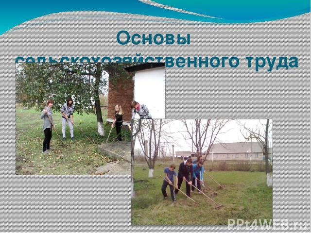 Основы сельскохозяйственного труда