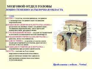МОЗГОВОЙ ОТДЕЛ ГОЛОВЫ ЛОБНО-ТЕМЕННО-ЗАТЫЛОЧНАЯ ОБЛАСТЬ СЛОИ: 1.КОЖА – толстая, м