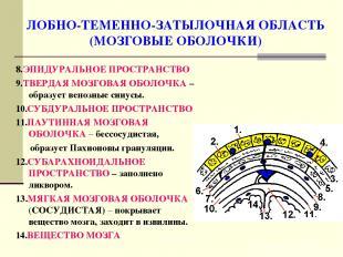 ЛОБНО-ТЕМЕННО-ЗАТЫЛОЧНАЯ ОБЛАСТЬ (МОЗГОВЫЕ ОБОЛОЧКИ) 8.ЭПИДУРАЛЬНОЕ ПРОСТРАНСТВО