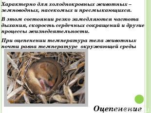 Характерно для холоднокровных животных – земноводных, насекомых и пресмыкающихся