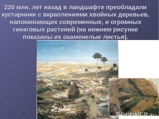 220 млн. лет назад в ландшафте преобладали кустарники с вкраплениями хвойных дер