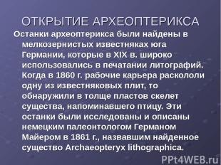 ОТКРЫТИЕ АРХЕОПТЕРИКСА Останки археоптерикса были найдены в мелкозернистых извес